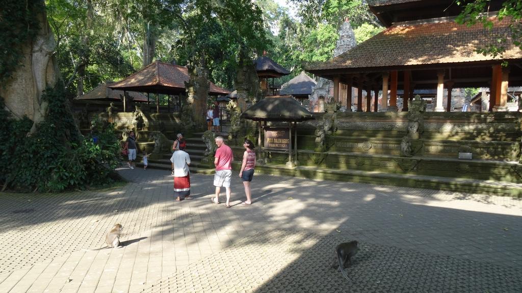Bali065-Ubud