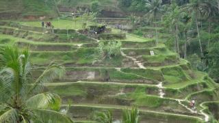 Bali084-Tumbakasa