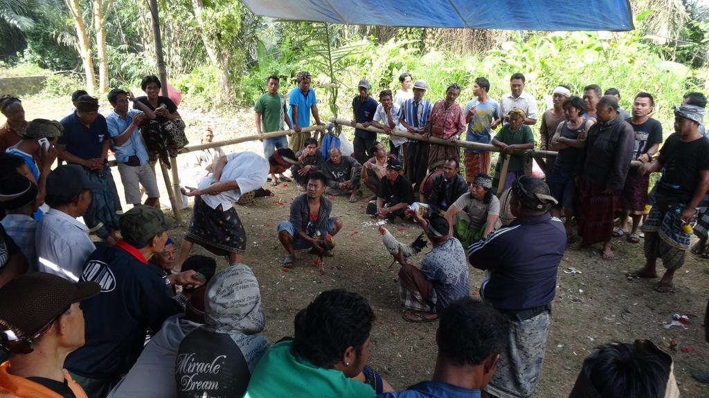 Bali114-Ubud