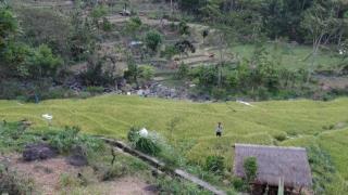 Bali331-Amed