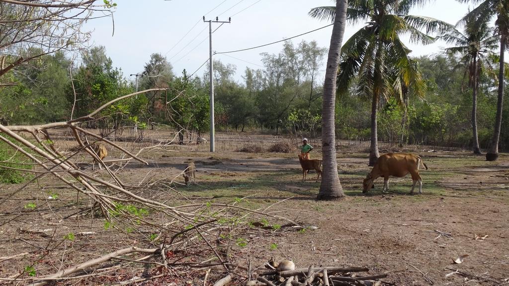 Lombok057-Gili Meno
