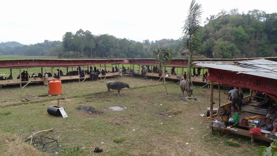 Sulawesi022-Toraja