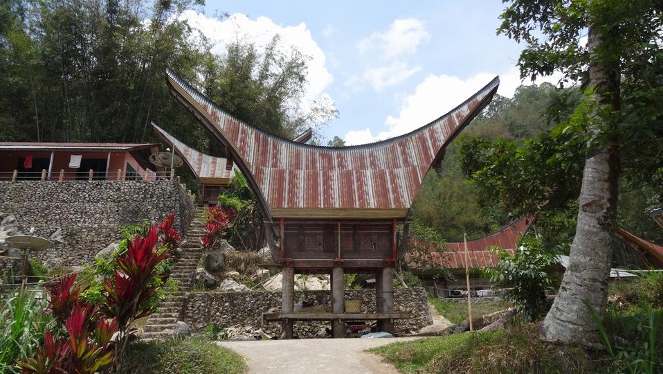 Sulawesi062-Toraja