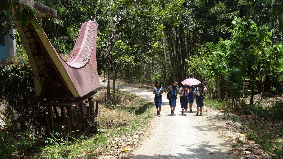 Sulawesi080-Toraja