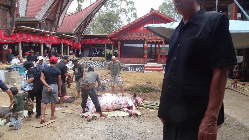 Sulawesi097-Toraja
