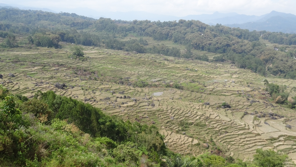 Sulawesi123-Toraja