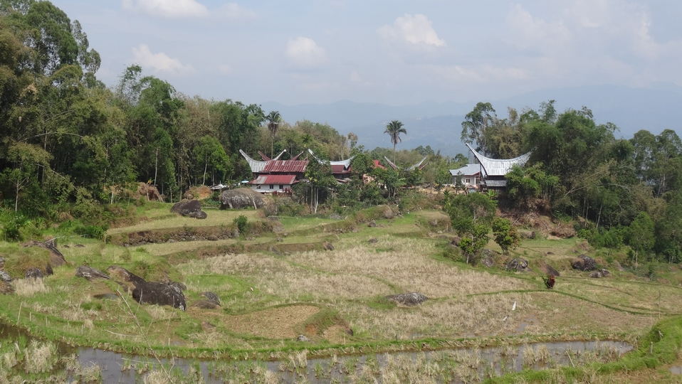 Sulawesi129-Toraja