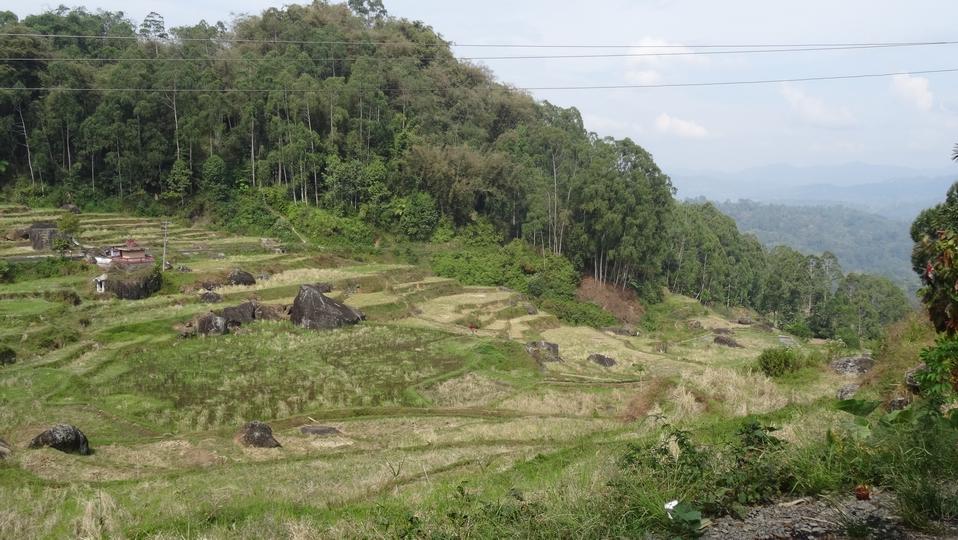 Sulawesi131-Toraja