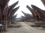 Sulawesi132-Toraja