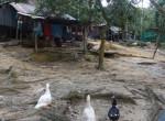 Thailand272-Koh Phi Phi