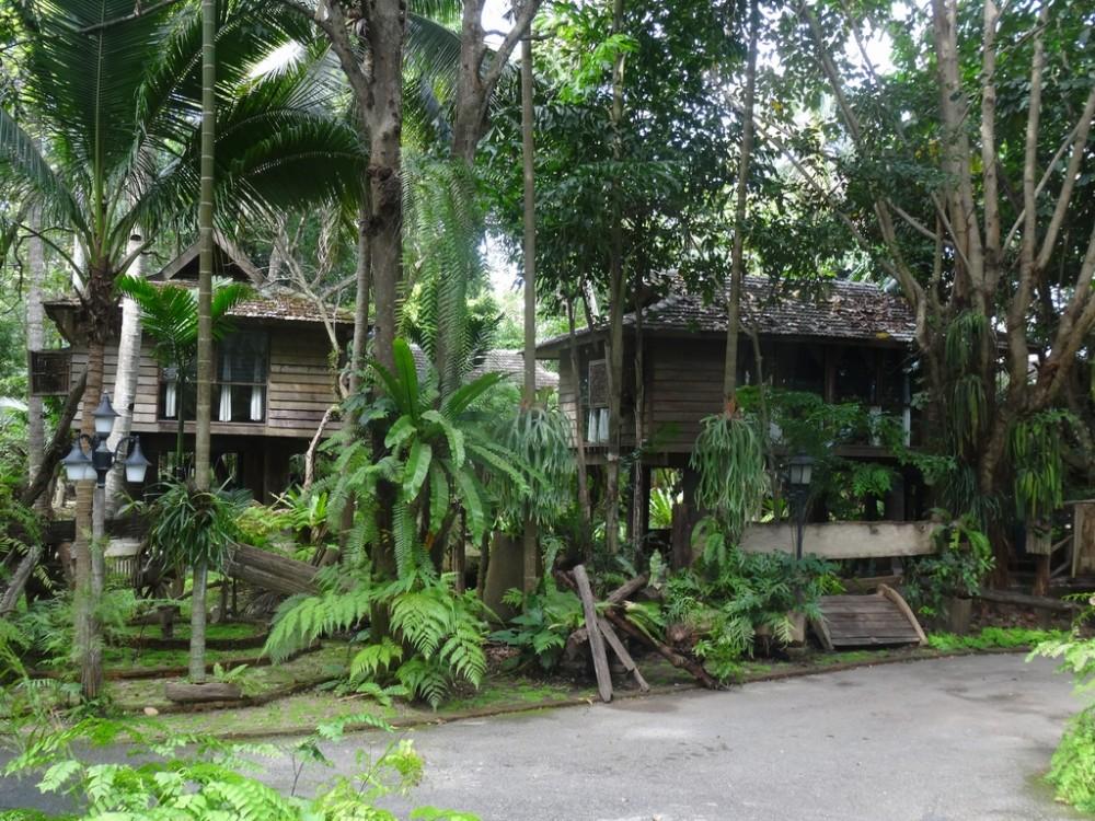 Thailand410-Chang Mai