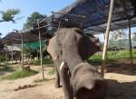 Thailand540-Thaton