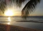 Philippinen0694-Palwan-Coco Loco Island