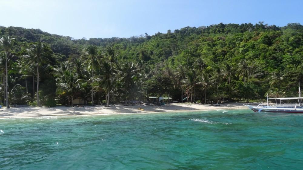 Philippinen0913-Coconut Garden Island