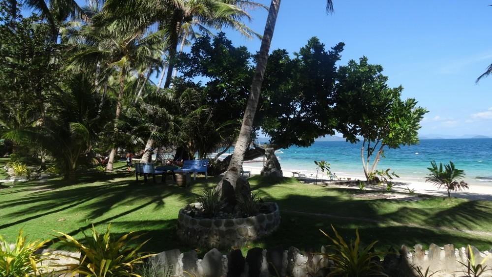 Philippinen0925-Coconut Garden Island