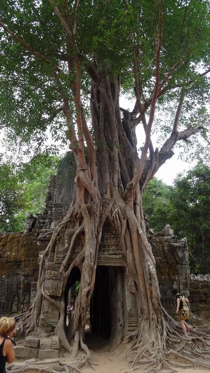 Kambodscha342-Angkor Wat