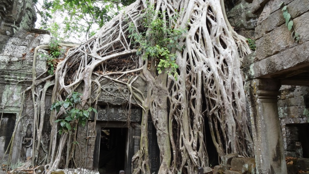 Kambodscha468-Angkor Wat